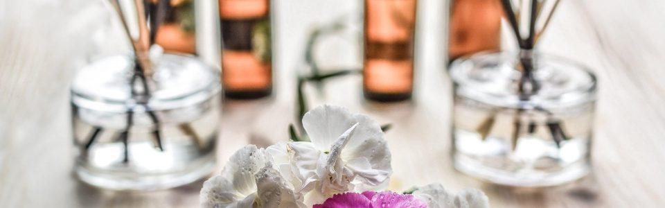 Linalool Terpene and Aromatherapy