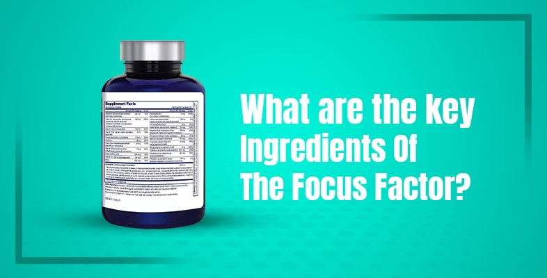 What Are The Key Ingredients Of The Focus Factor